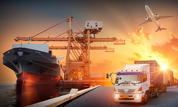 Distribution & Trade